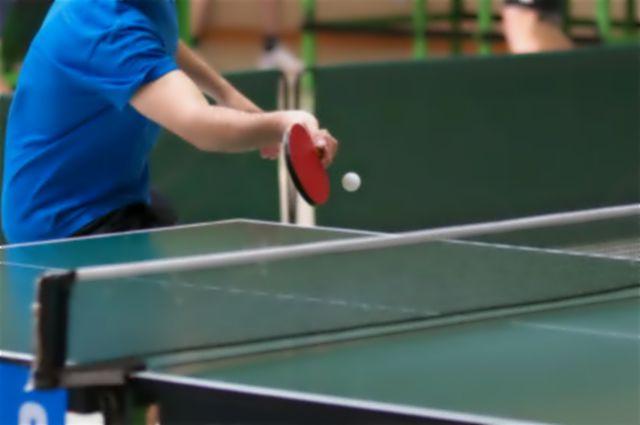 Tenis stołowy jaworzyna śląska