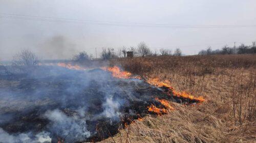 Pożar traw Jaworzyna Śląska